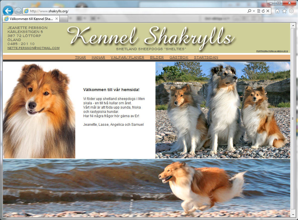 Kennel Shakrylls